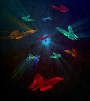 1. Human Effect - An Analogous Butterfly effect